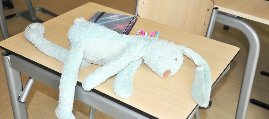 Speelgoedkonijn op school DSC 5924